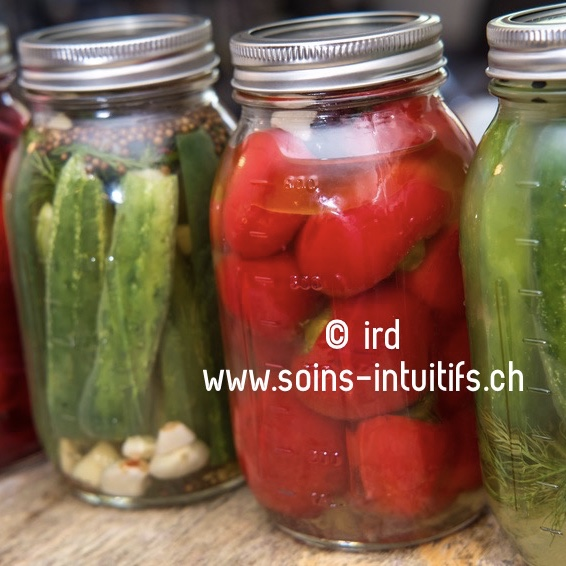 Fermentation ou lacto-fermentation