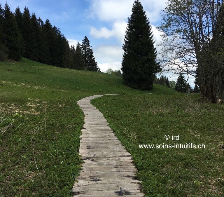 Le Chemin de la rencontre avec Soi